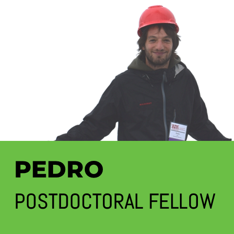 PEDRO Postdoctoral Fellow